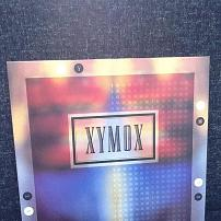 Xymox - Blind Hearts UK 12